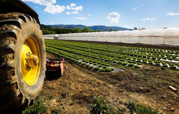 AGRICOLTURA, CIA-AGRICOLTORI, CONTRIBUTI, COVID, Non Solo Vino