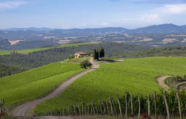 BAROLO, BRUNELLO, FINE WINE, ITALIAN WINE, ITALY, ITALY 100, LIV-EX, LIV-EX 100, PIEDMONT, SECONDARY MARKET, SUPERTUSCAN, TUSCANY, News
