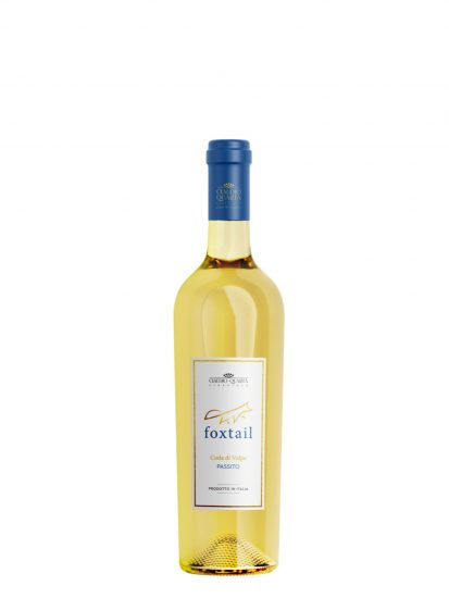 CAMPANIA, CLAUDIO QUARTA, PUGLIA, Su i Vini di WineNews