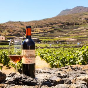 """Tra critica e prezzo, ecco i """"World's Best Value Italian Wines"""" by Wine Searcher"""