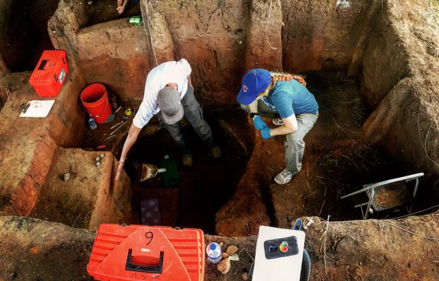 archaeology, WINE, News