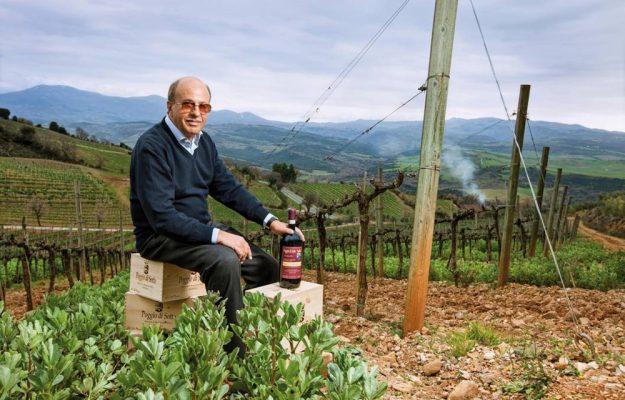 BERTANI DOMAINS, GRUPPO SANTA MARGHERITA, guides, native grapes, POGGIO DI SOTTO, VINIBUONI D'ITALIA 2022, WINE, News