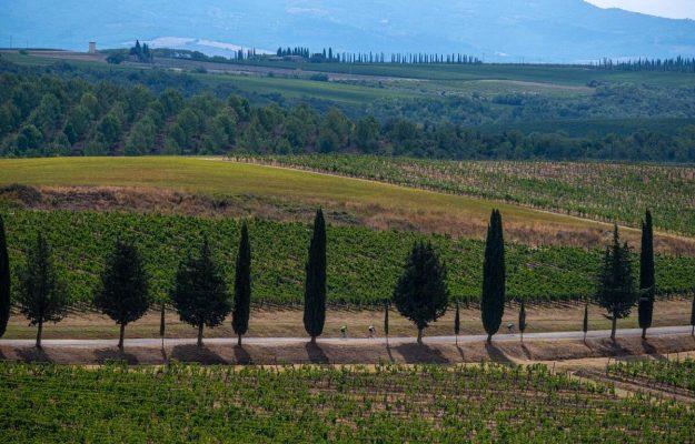 BRUNELLO DI MONTALCINO, GIRO D'ITALIA, TERRITORI, vino, Italia