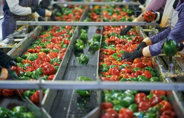 AGROALIMENTARE ITALIANO, COVID-19, E-COMMERCE, ETICHETTA, FOOD, FOOD DELIVERY, GREEN MARKETING, SEMINARIO, SOSTENIBILITA, WINE, Non Solo Vino