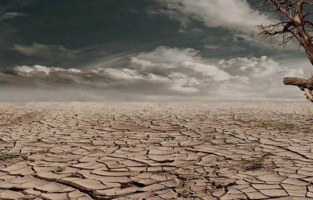 CALDO, CARESTIA, CLIMATE CHANGE, Coldiretti, FAME, ONU, Non Solo Vino