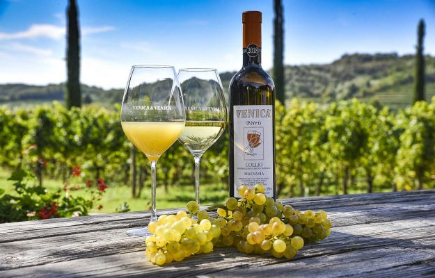 ALTO ADIGE, BIANCHI, CANTINA DI TERLANO, ELENA WALCH, EMIDIO PEPE, FRIULI VENEZIA GIULIA, ITALIA, JERMANN, LOS ANGELES, MIBD ANALYTICS, PIEROPAN, SICILIA, VENICA & VENICA, vino, Italia