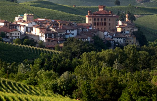 2021, BAROLO, City of Wine, ITALY, LANGHE, VITICULTURE, News
