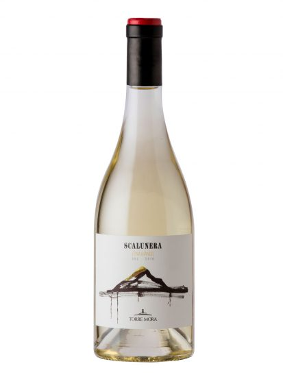 CARRICANTE, ETNA, PICCINI, TORRE MORA, Su i Vini di WineNews