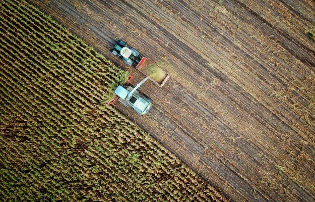 AGRICOLTURA, CENTINAIO, Cia, Confagricoltura, ITALIA, USA, Non Solo Vino