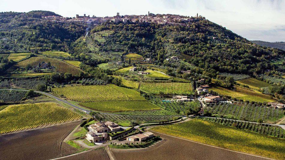 ALTISSIMA QUALITÀ, MONTALCINO, VENDEMMIA 2015 E 2016, Su i Quaderni di WineNews
