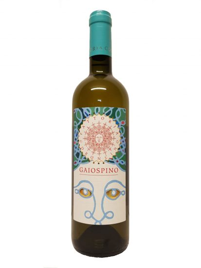 CASTELLI DI JESI, FATTORIA CORONCINO, VERDICCHIO, Su i Quaderni di WineNews