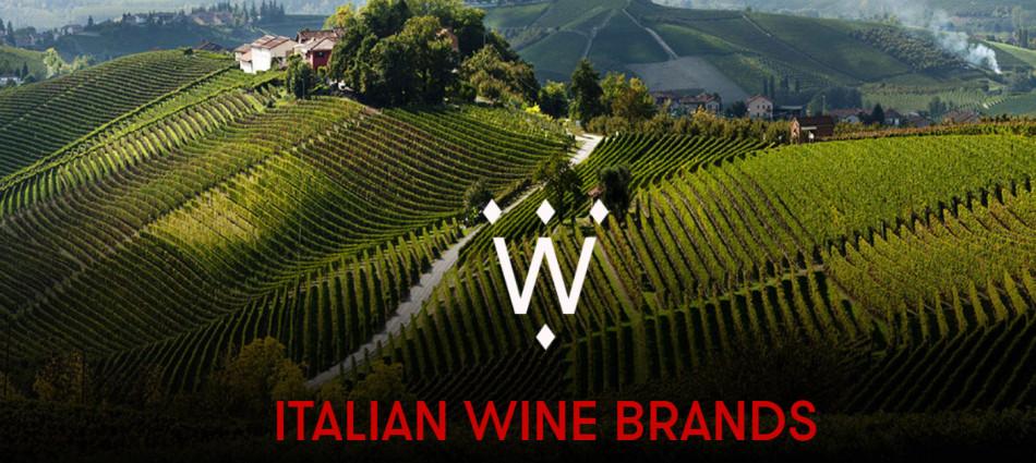 Vino e finanza: Italian Wine Brands acquisisce Enoitalia per 150 milioni di euro