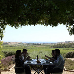 Wine tourism stronger than the pandemic: +10% of tourists who traveled thanks to food and wine