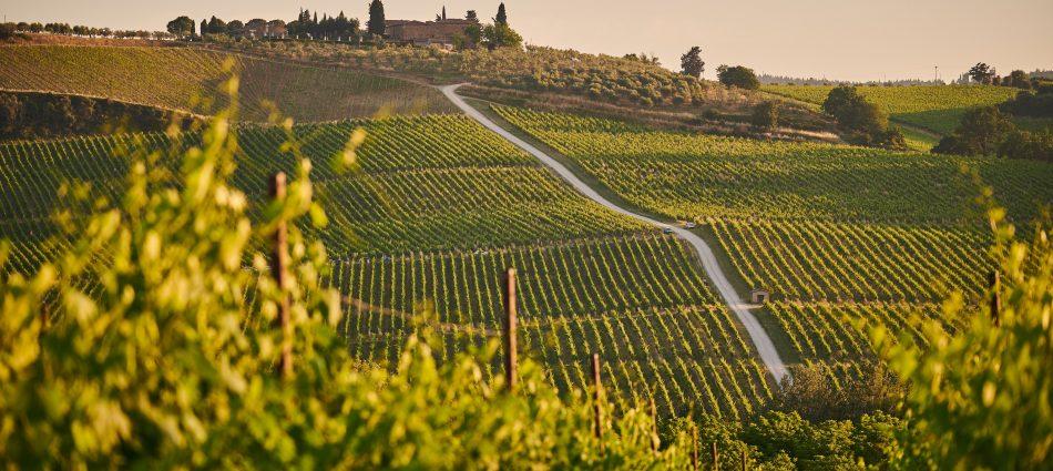 La Toscana del vino riparte dell'export, che, nel 2020, ha tenuto, sfiorando il miliardo di euro