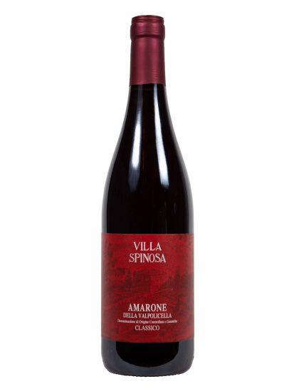 AMARONE, VALPOLICELLA, VILLA SPINOSA, Su i Vini di WineNews