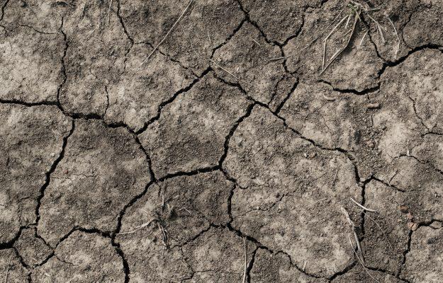 AGRICOLTURA, CAMBIAMENTO CLIMATICO, CIBO, Non Solo Vino