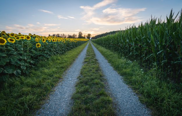 AGRICOLTURA, BANCHE, CREDIT AGRICOLE, FINANZA, Non Solo Vino