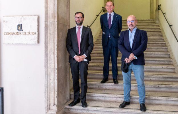 ASSEMBLEA, Confagricoltura, MASSIMILIANO GIANSANTI, MINISTRO POLITICHE AGRICOLE, MINSITRO TRANSIZIONE ECOLOGICA, ROBERTO CINGOLANI, STEFANO PATUANELLI, Italia