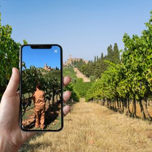 """A visit to the winery in augmented reality: the """"Banfi Experience"""", among the rows of Brunello"""