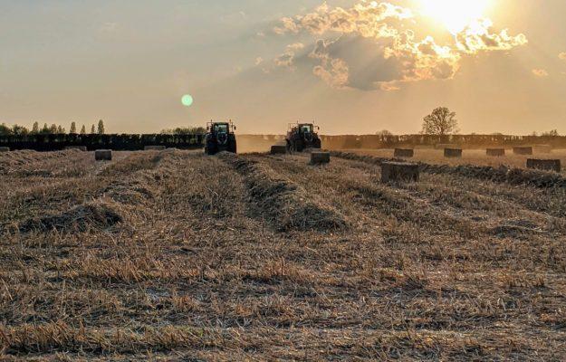 AGRICOLTURA, Confagricoltura, INVESTIMENTI, NUOVA SABATINI, SVILUPPO ECONOMICO, Non Solo Vino