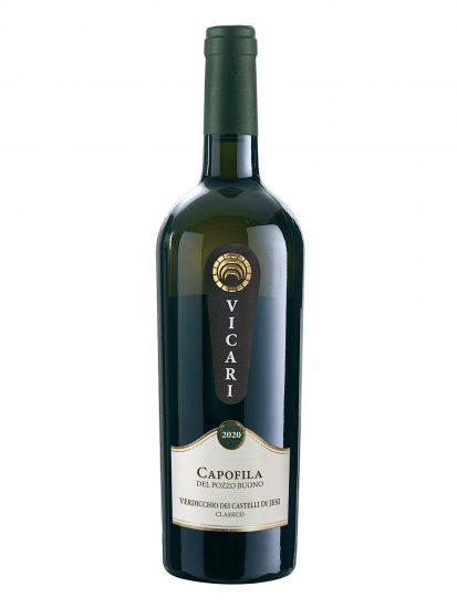 CASTELLI DI JESI, VERDICCHIO, VICARI, Su i Vini di WineNews