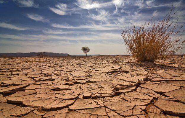 AGRICOLTURA, AMBIENTE, CLIMATE CHANGE, CO2, DESERTIFICAZIONE, EMISSIONI, GLOBAL WARMING, INCENDI, MEDITERRANEO, ONU, RISCALDAMENTO GLOBALE, VITICULTURA, Mondo