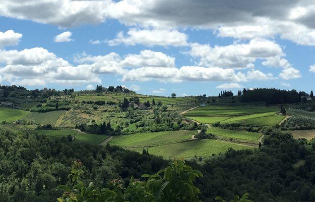 FINE WINE, vino, VINO ITALIANO, WINE LISTER, Italia