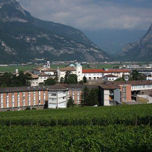 """Varietà resistenti, alla Fondazione Mach la """"Rassegna con valutazione dei vini da uve Piwi"""" n. 1"""