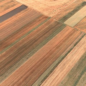 Food System Summit dell'Onu: allarme land grabbing. I terreni fertili in mano ai Paesi ricchi