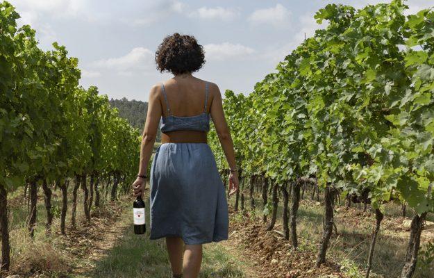 ALBERI, AMBIENTE, BORGO SAN LORENZO, MUGELLO, SANTA CRISTINA, SAVE THE PLANET, vino, Italia