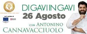 36-Consorzio_del_Gavi_300x120