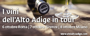 Banner Alto Adige NewsLetter 2018