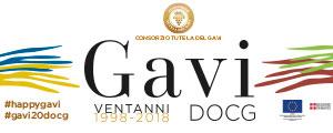 Banner Gavi 2018