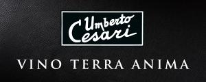 Banner Cesari Statico