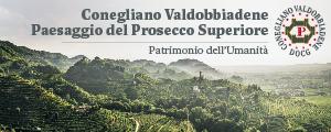Banner Prosecco Conegliano Newsletter
