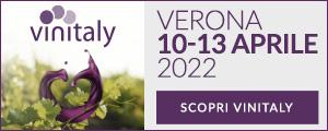 Banner Vinitaly 2022 300x120 statico