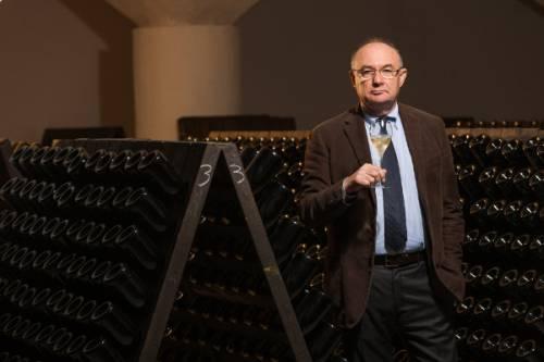 Winenews aumento del potenziale produttivo crescita for Futuro del classico