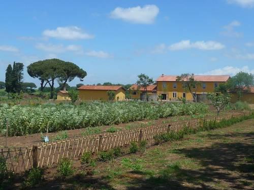 Winenews la tenuta di fiorano azienda biologica for Tenuta di campagna francese
