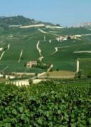 Le Menzioni Geografiche Aggiuntive di Barolo e Barbaresco sono ancora un unicum nell�Italia del vino ...