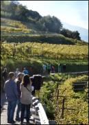 Viaggiare in Italia seguendo le rotte del vino by Cond� Naste Traveller