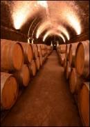 Sentiment positivo per il vino italiano dopo i primi 6 mesi del 2017, ma rallenta l'export